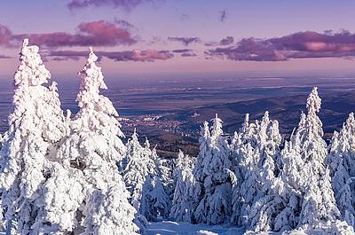 Winterbild Brocken im Harz